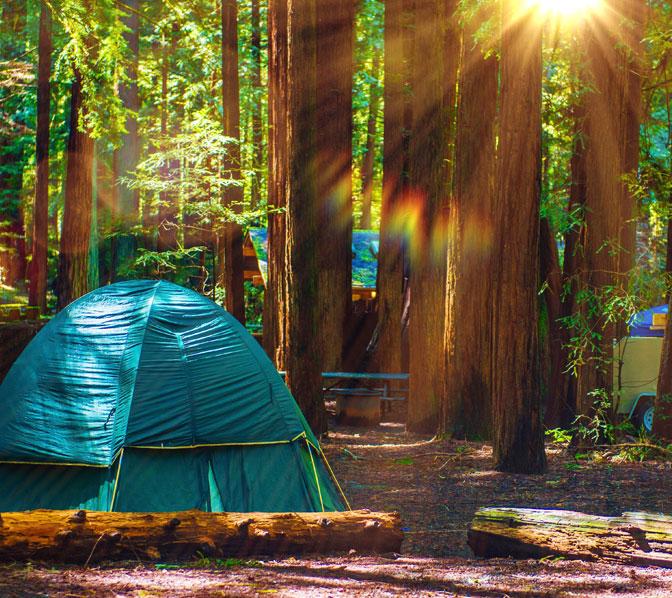 https://www.amicalolafallslodge.com/wp-content/uploads/2015/09/Amicalola-Falls-Adventure-Lodge-GA-State-Park-Camping-1.jpg