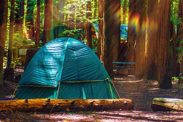 Amicalola Falls Adventure Lodge GA State Park Camping Menu