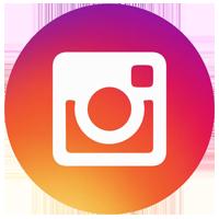 Amicalola's Instagram Feed