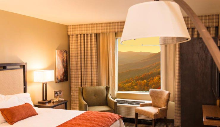 Amicalola Falls Adventure Lodge Room Fall