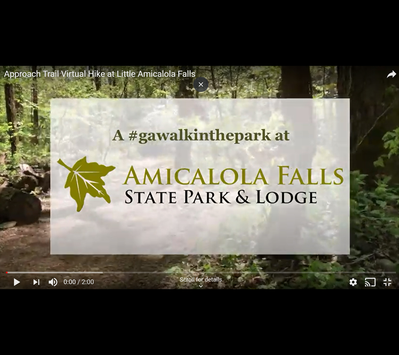 Amicalola Virtual Hike