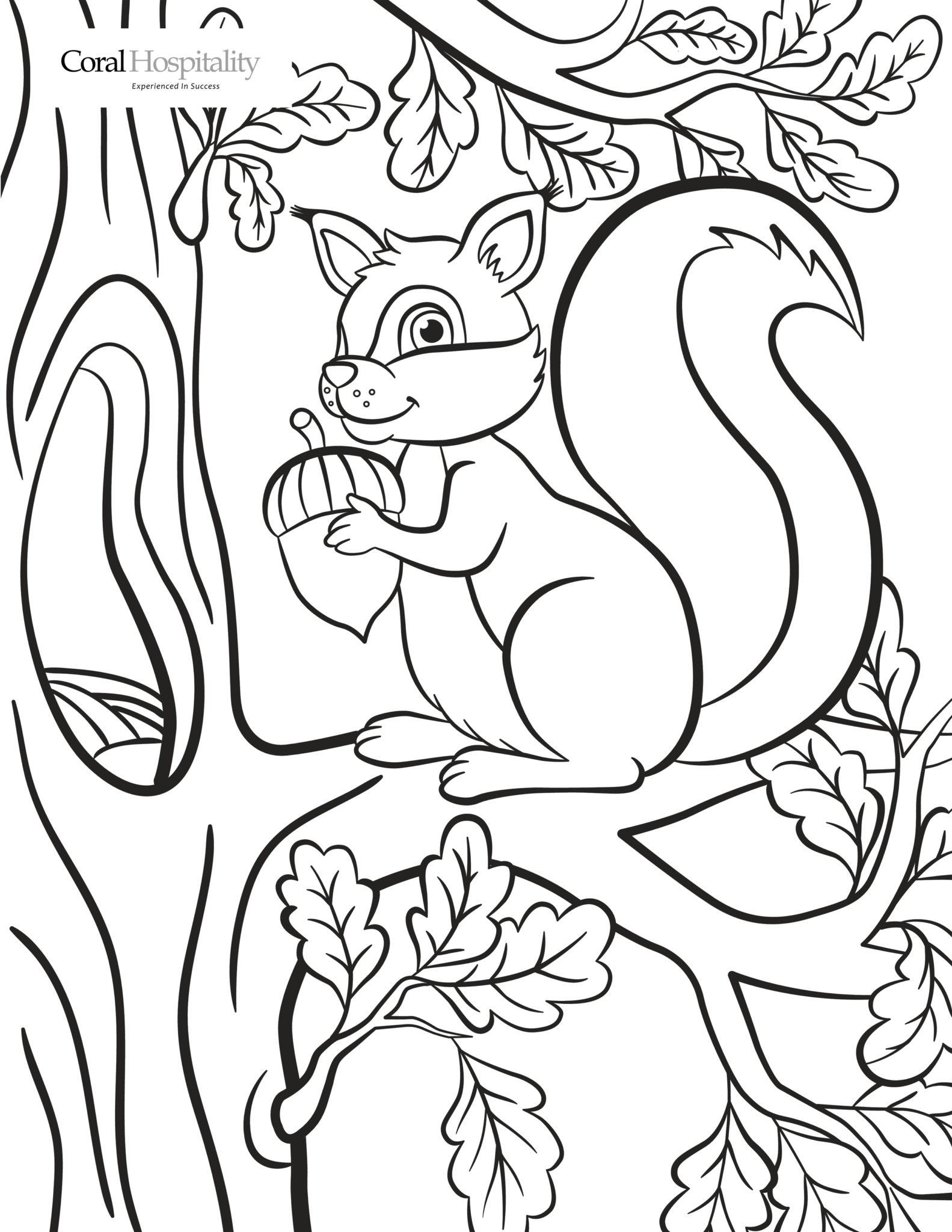 Coloring Squirrel