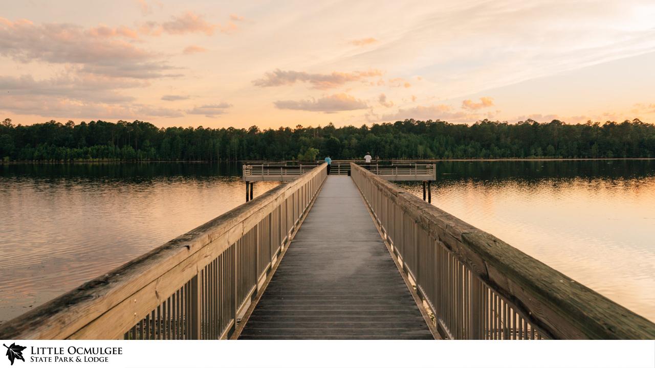Little Ocmulgee Lake Zoom Background