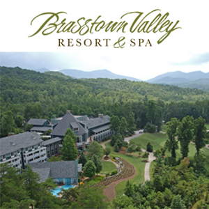 https://www.amicalolafallslodge.com/wp-content/uploads/2020/06/BrasstownValley_NoShadow.jpg